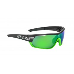 Salice 016RWP Polarized Black-green/ 2 set spar lens